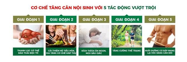 San-pham-vien-an-ngon-GG-phu-hop-voi-nhieu-doi-tuong-khac-nhau